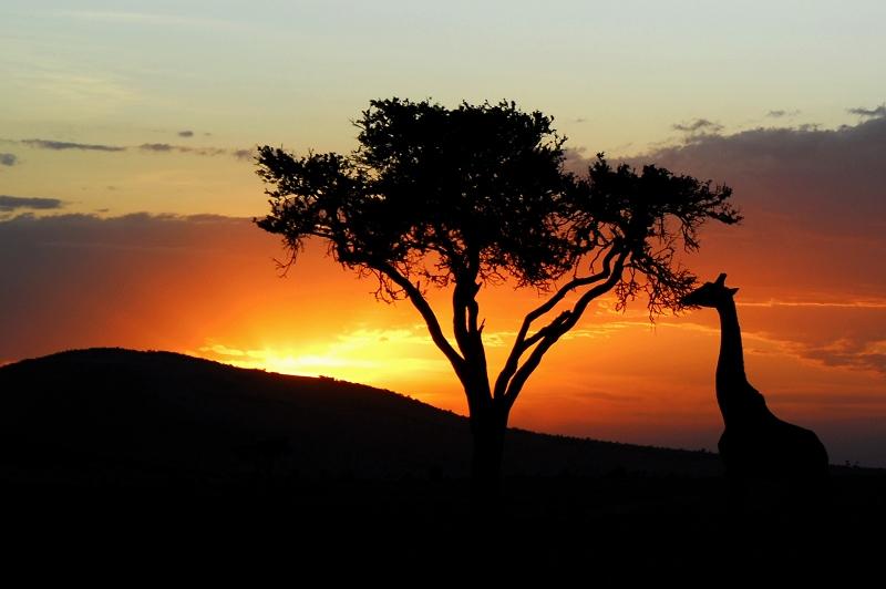 夏天可以去非洲避暑,真的假的?