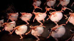 圣彼得堡娱乐-音乐与芭蕾剧院