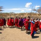 坦桑尼亚攻略图片