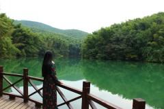 石塘竹海 ~青山绿水