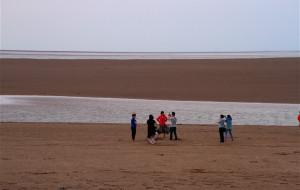 【盐城图片】东台弶港滩涂捡蛤蜊,逛中华麋鹿园和黄海国家森林公园