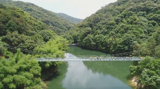 前往玻璃栈道,桂山玻璃吊桥总投资800万元左右,吊桥长138米,宽2米