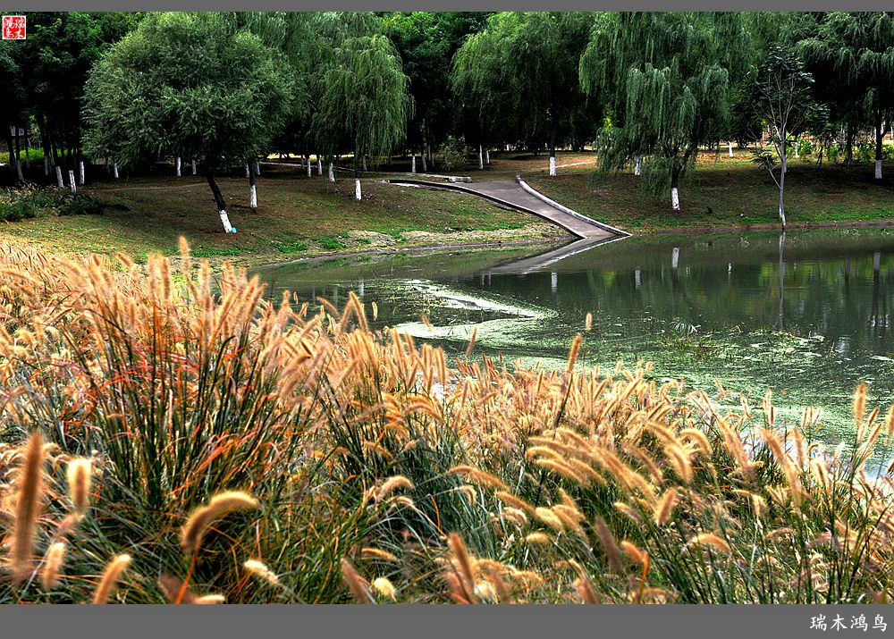 【原创摄影】走进昌平滨河森林公园