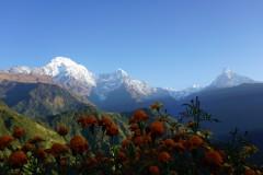用双脚丈量世界之尼泊尔篇--poon hill 小环线(超多实用信息)!!!
