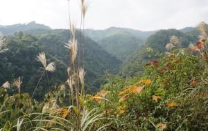 【贺州图片】徜徉桂东南(七)黄洞土瑶