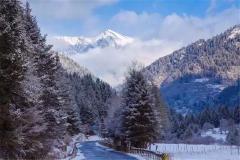 走远了吃亏!成都几百公里处,就有4个世外桃源,彩林赏雪都不误