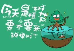 【植树节活动】红树成林