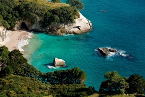 新西兰 科罗曼德半岛热水海滩一日游(私人订制 含奔驰