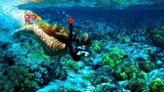 圣灵群岛 心形礁直升机观光飞行25分钟/60分钟 出海游