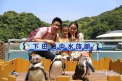 一家三口的静冈-伊豆-热海-箱根之旅