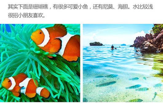 泰国普吉岛蛋岛半日游(中文导游李小龙 赠送椰子菠萝炒饭 蛋岛蓝钻岛