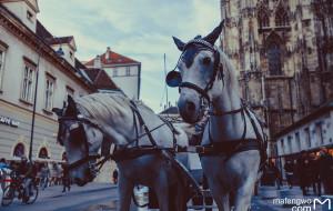 【东欧图片】东欧五国|我的梦碎在了哈尔施塔特