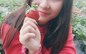 """【阜阳图片】拼价最便宜""""草莓园""""在钟落潭附近,又大又甜的奶油草莓你别跑"""