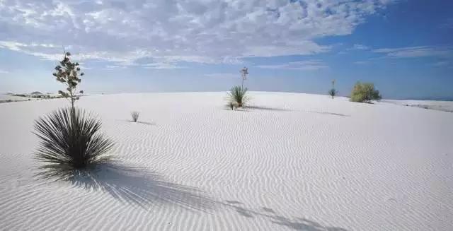 你见过白色的沙漠吗?简直美到不可思议!_游记