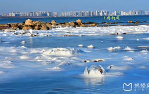 【秦皇岛图片】北戴河印象之三:走过那年的春夏秋冬