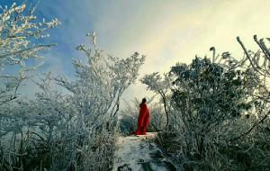 【郴州图片】郴州你不能错过的雪景