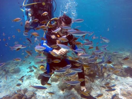 菲律宾 宿务私人岛屿 娜鲁苏安岛浮潜 上岛拍照 岛上海鲜自助餐一日游