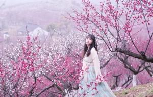 【张家港图片】春天十里,我穿着汉服在梅花林等你