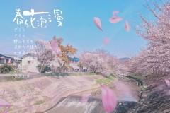 *(蜜月之行--日本 与你跨过的第三个国家