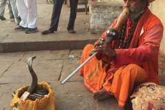 Bianbian的印度一人十日游(新德里,阿拉格,瓦拉纳西,附小提示)