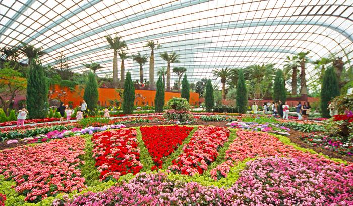 花穹(滨海湾花园)(Flower Dome)