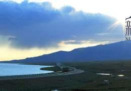 徜徉花海中---最美天山路