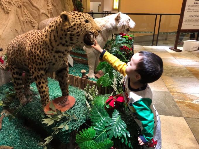 第四天:长隆野生动物园 广州市区