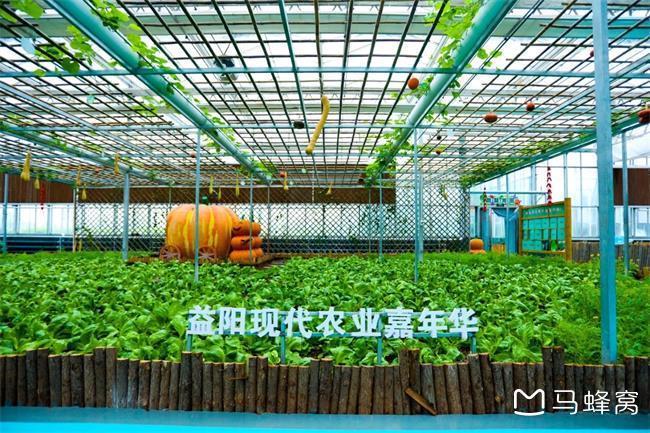 益阳现代农业嘉年华