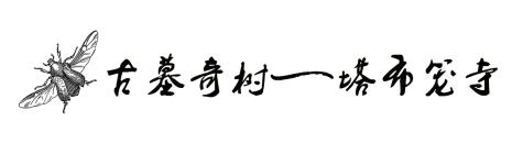 ▶ 古墓奇树——塔布笼寺