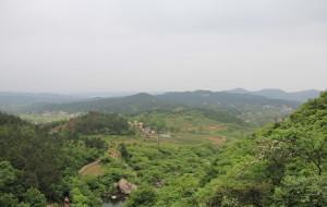 【信阳图片】填补蜂窝空白-河南旅游--信阳金刚台风景区