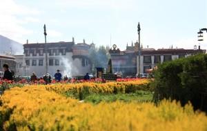 【工布江达图片】西藏,幸福在路上