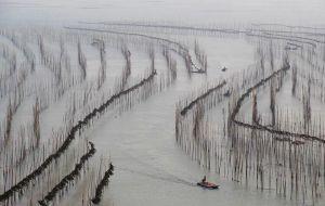 【宁德图片】霞浦——不只是滩涂