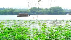 旅游景点-杭州西湖
