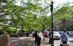 【波士顿图片】五月的波士顿