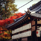 京都攻略图片