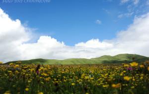 【年保玉则图片】大美青海,大美年宝玉则---2012旅行四川阿坝州