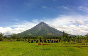 【黎牙实比图片】Mt. Mayon and Whaleshark in Legaspi