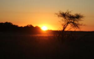 【津巴布韦图片】津巴布韦:哈拉雷-布拉瓦约-万基野生动物园-维多利亚瀑布