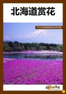 北海道赏花
