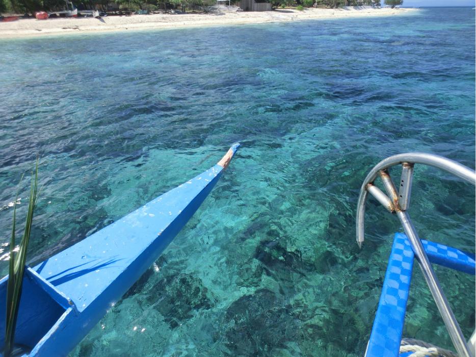 菲律宾 宿务 薄荷岛 潜水
