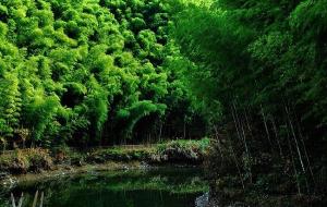 宏村娱乐-黄山距黟木坑