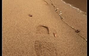 【安阳图片】一直往南方开 - 心在远方,路在脚下,两周独行东南八省