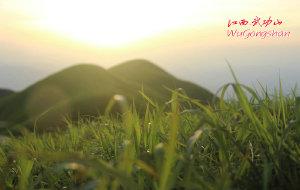 【武功山图片】直至云中草原-2014年5月1日江西武功山