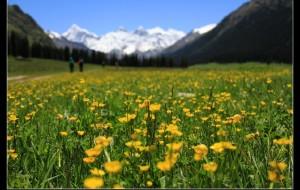 【夏特古道图片】新疆之绿野行踪