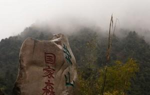 """【宜章图片】【腾""""云""""驾雾之旅】——莽山三日游"""