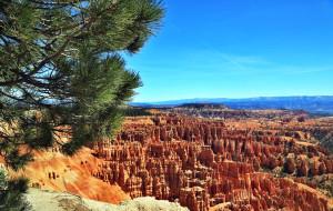 【犹他州图片】石林奇观:布莱斯峡谷国家公园