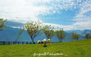 【南投图片】(11)环台湾自由行之—【清境农场】