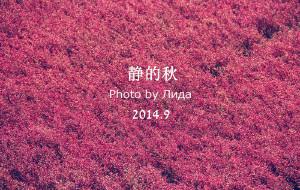 【锦州图片】《你也看到那一抹红了吗?》--秋的耍 盘锦-锦州-兴城-绥中 各种村镇的探秘之旅