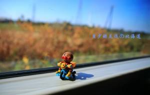 【北海道图片】【2014.10月亲子】北海道的驻足时光~带着贝少の小脚丫