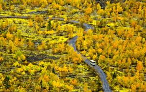 【兴安盟图片】一路狂奔,只为追随秋天的脚步——(东北、内蒙古自驾)